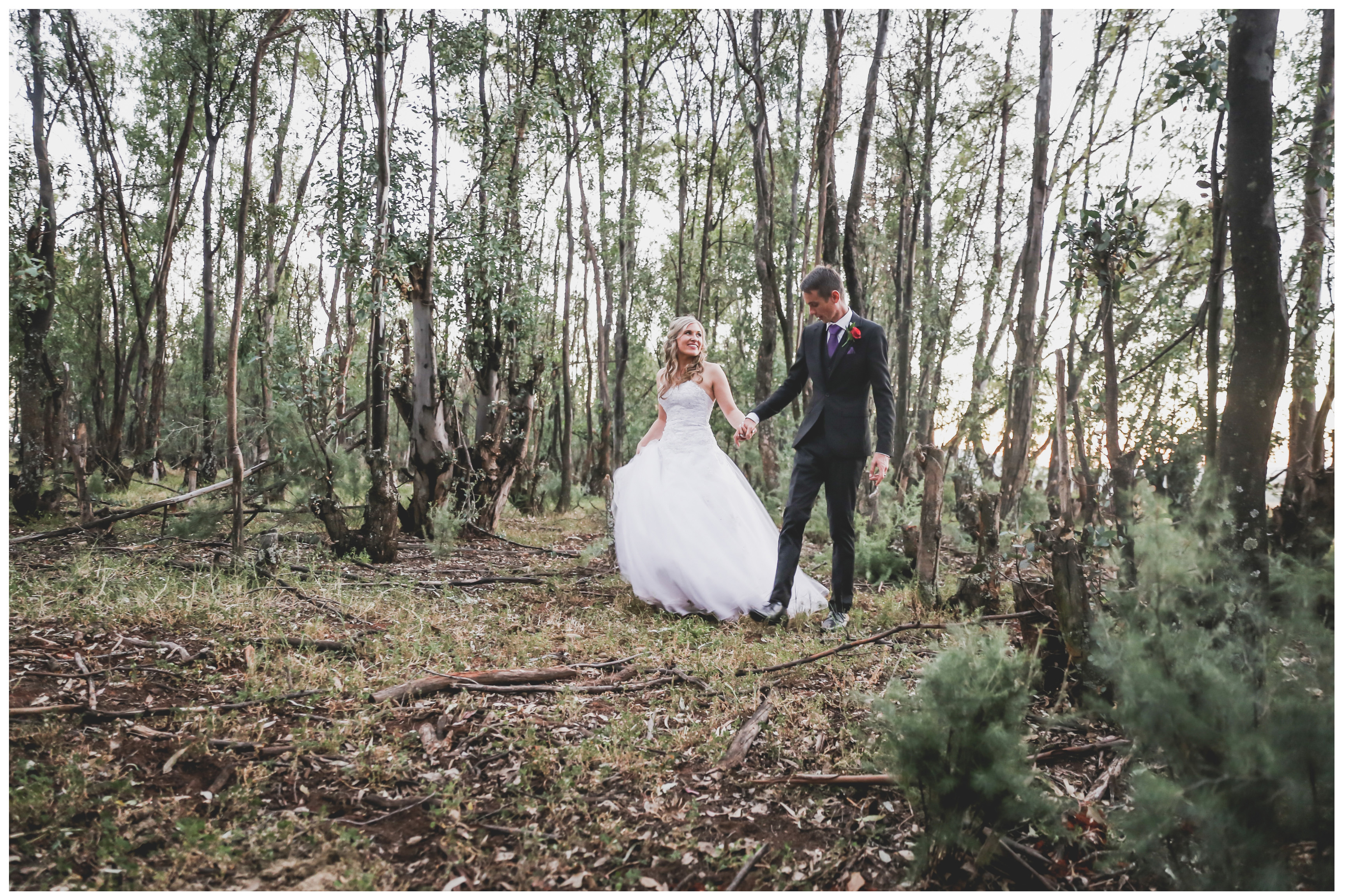 Free Wedding Venues.Savannah One Of The Top Wedding Venues In The Free State